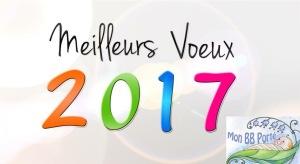 Bonne année Mon BB Porté www.monbbporte.net